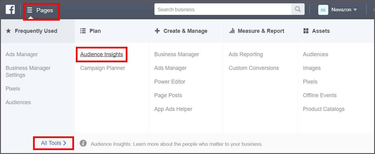 Find facebook audience insights