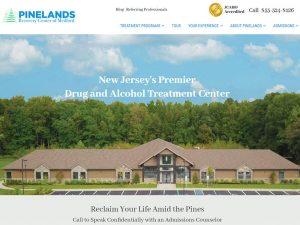Website Design | Logo Design | Photography Pinelands Recovery