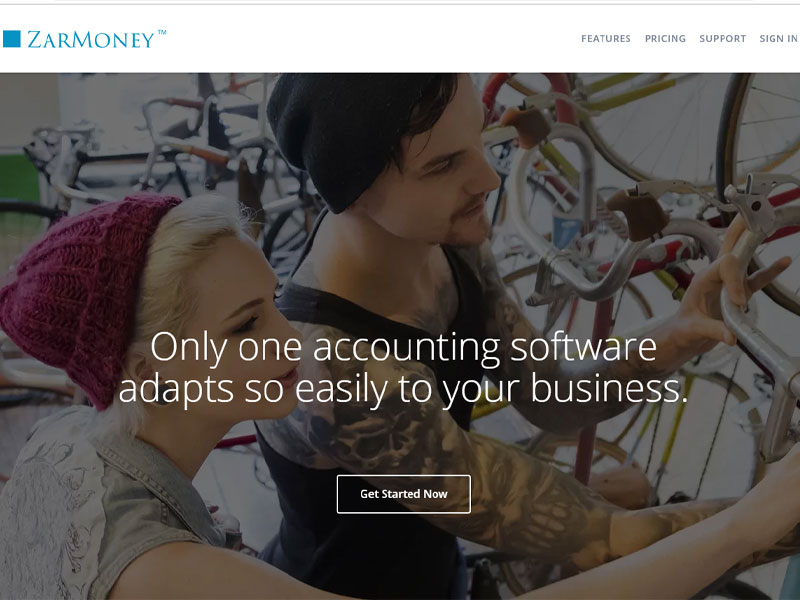 Website Design for ZarMoney
