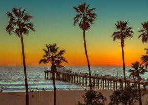 Los Angeles Local Digital Marketing Services