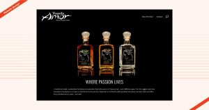 Tequila Amor Website Design